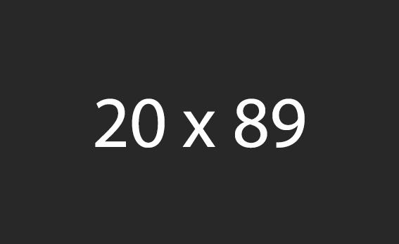 20x89