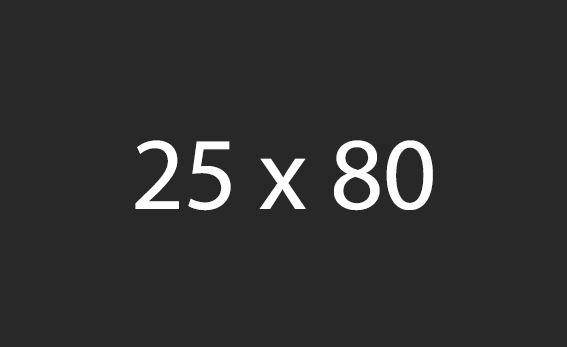 25x80